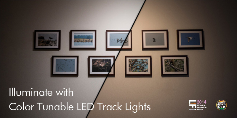 Track Light - TAF Series